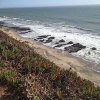 plage pacifique nord californie usa