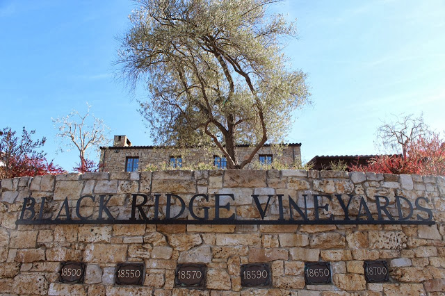 black ridge vineyards