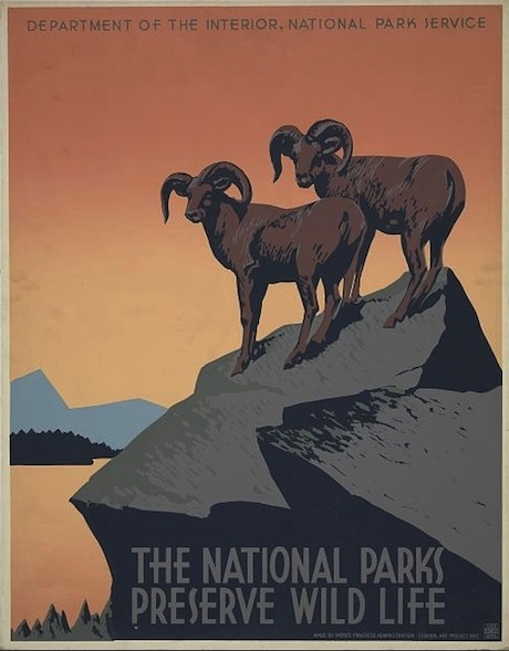 The National Parks Preserve Wild Life - Poster WPA