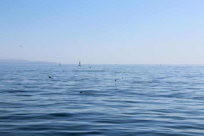Baie de Monterey, Océan Pacifique