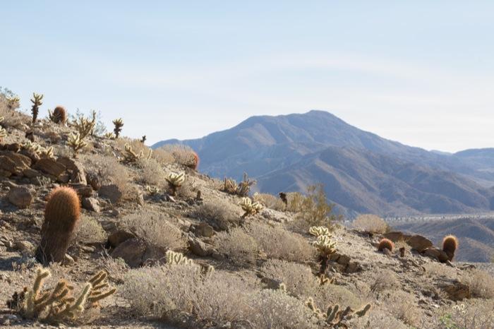 bill kenyon overlook anza borrego desert state park