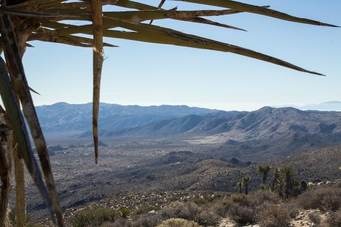beau point de vue en haut de la montagne