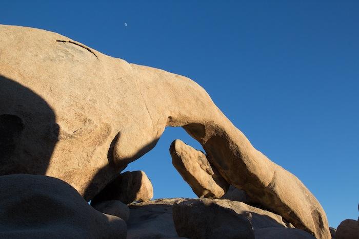 Arch Rock : une arche à Joshua Tree National Park