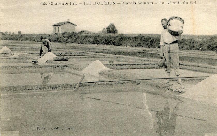 Carte Postale Marais Salant