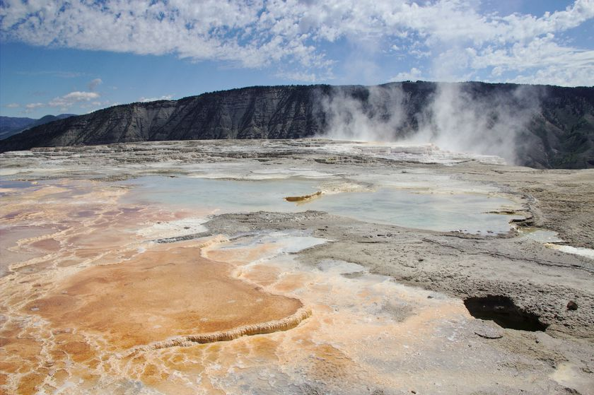 Source chaude à Yellowstone
