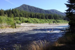 Olympic National Park_11