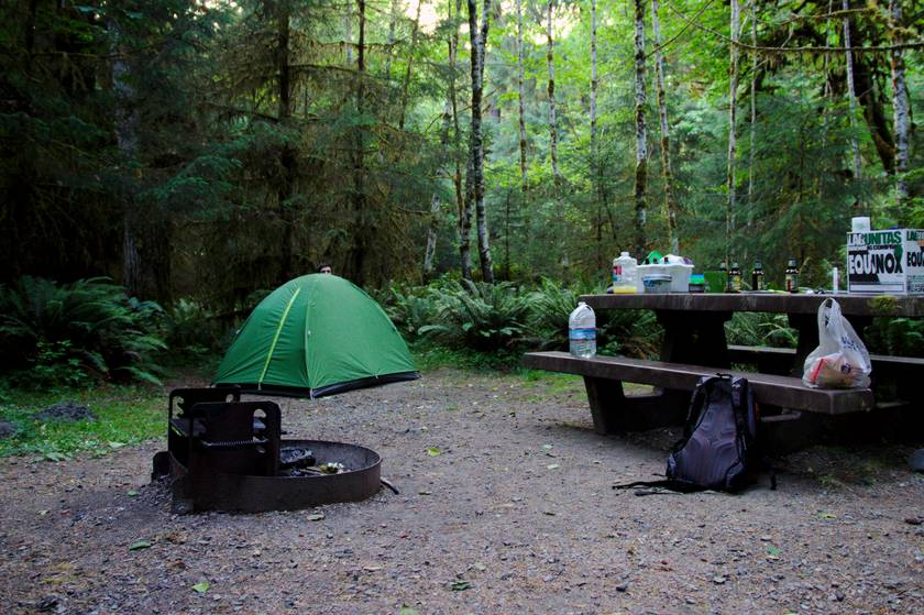 Hoh Campground
