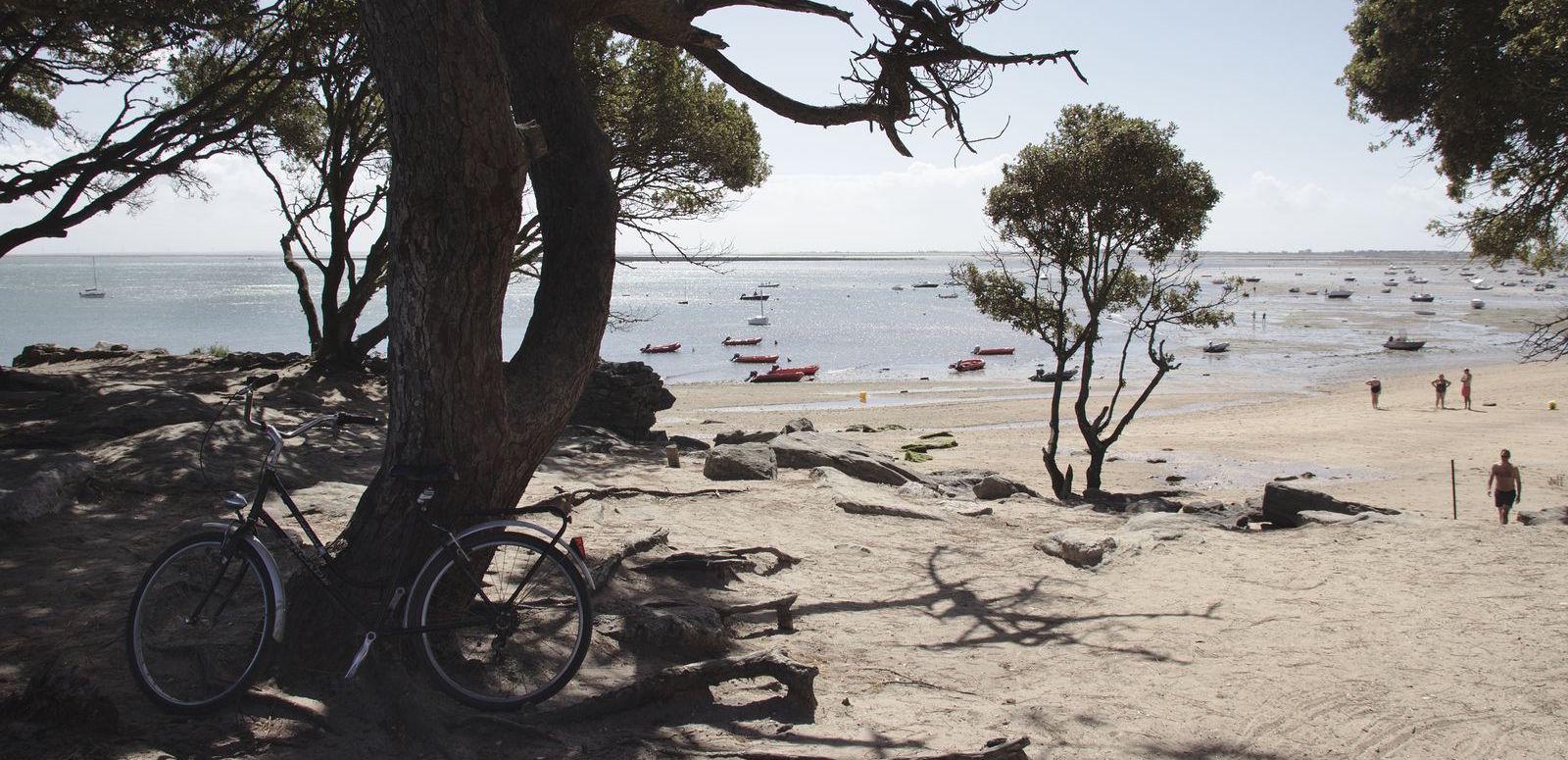 noirmoutier-vue-sur-la-mer-a-bicyclette