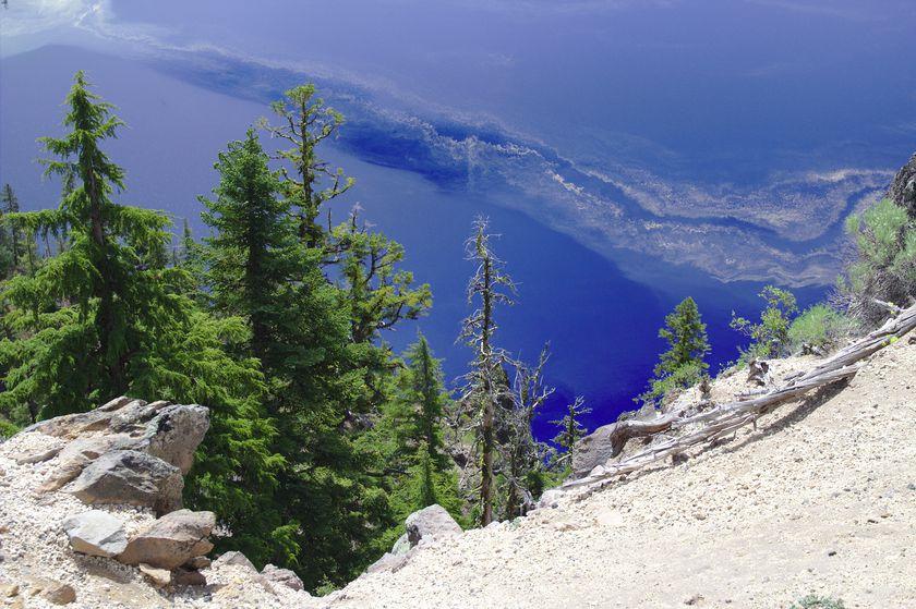 Les arbres sur le lac tout bleu