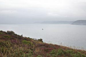 landes-bretonnes-un-voilier-au-loin