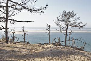 vue-sur-le-banc-darguin-de-la-dune-du-pilat